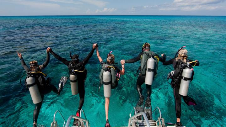 Top 10 Places for Scuba Diving 🤿 in Florida