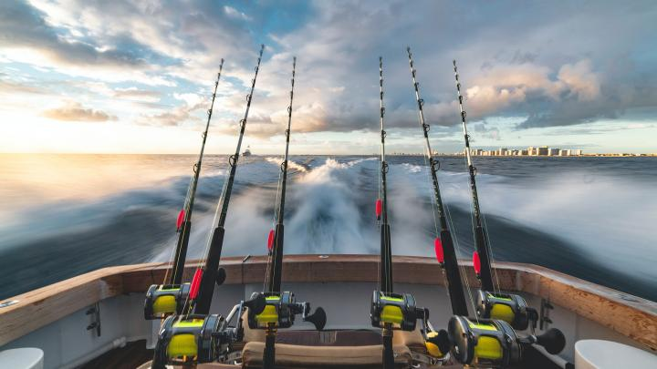 Top 5 Fishing Spots in the Southeast 🎣